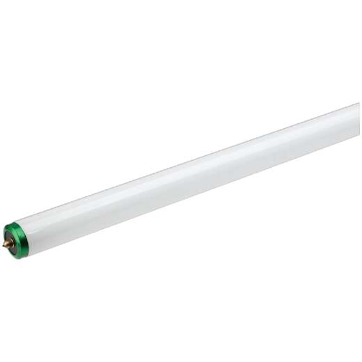 Philips ALTO 60W 96 In. Daylight Deluxe T12 Single Pin Fluorescent Tube Light Bulb (2-Pack)